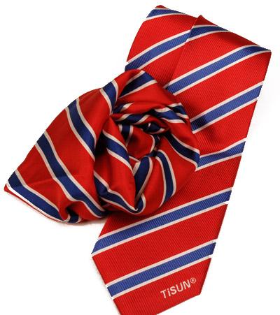 TiSUN Krawatte und Damentuch